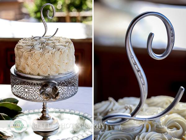 Folsom wedding photographers (29)