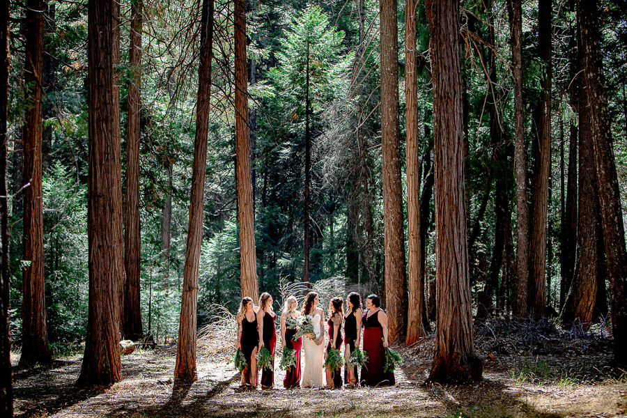bridesmaids wearing burgundy dresses in forest
